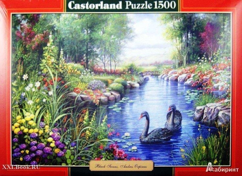 Пазл Черные лебеди, 1500 элементов С-151042 Castorland Касторленд