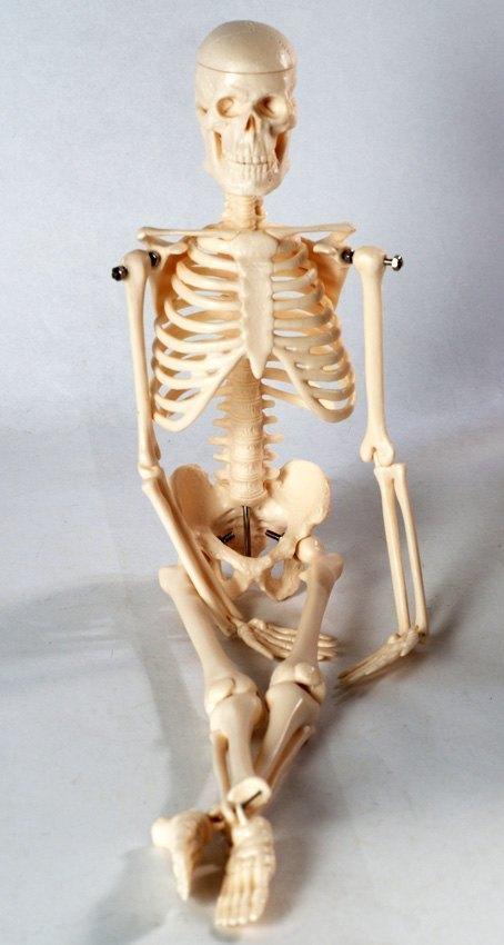 Как сделать в бумаги скелет руками 98